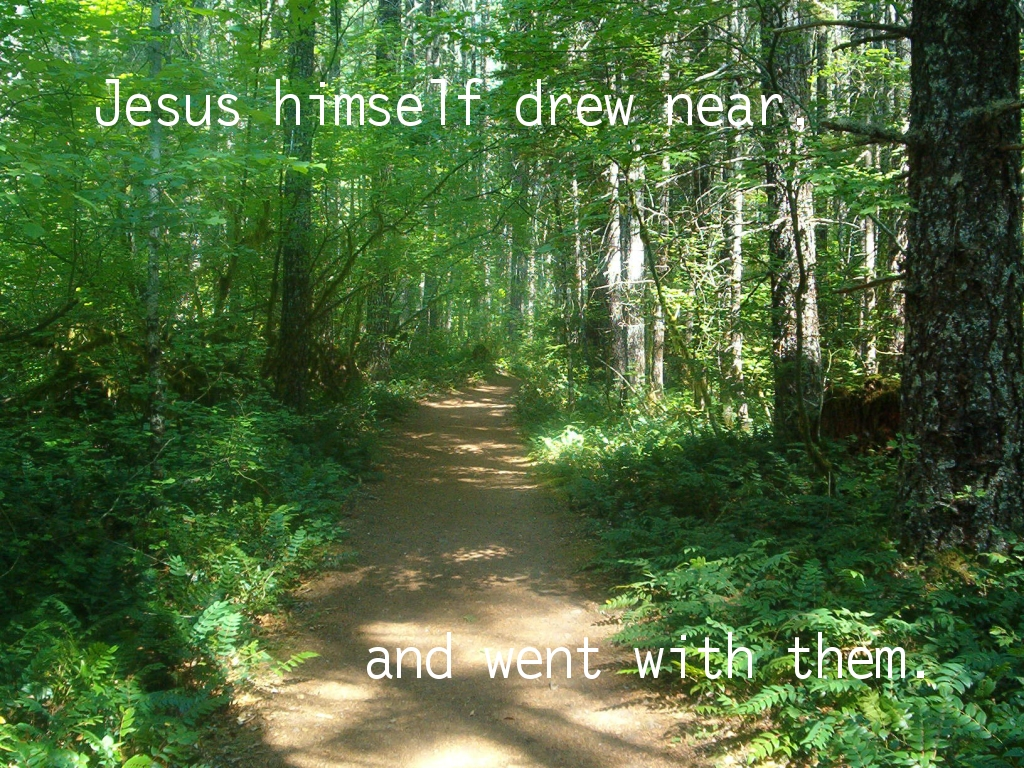 Jesus himself drew near, and went with them (Luke 24:15)