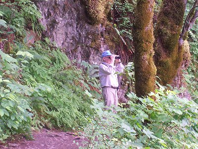Horsetail Falls, Oregon: Dad part way up to the upper falls