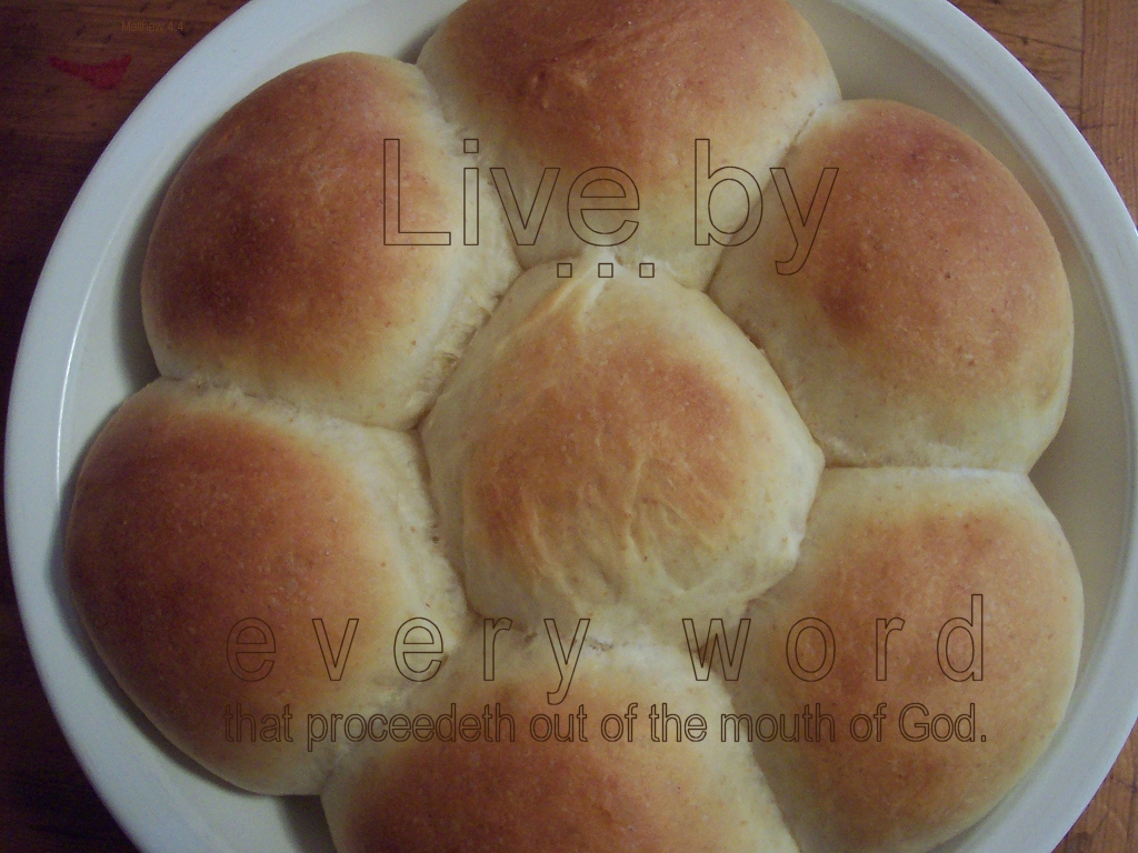 bread photo: live by every word that comes out of God's mouth