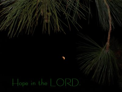 [Hope in the LORD (Psalm 131:3)]