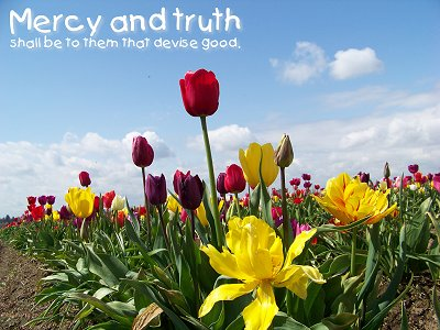 Let not mercy and truth forsake thee (Proverbs 3:3)