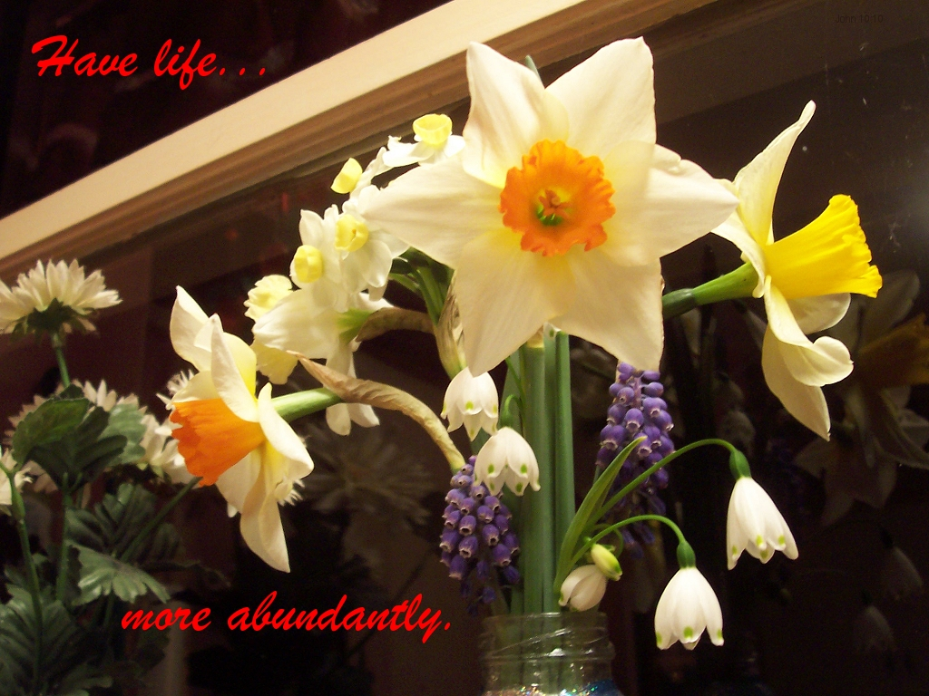 [The Scriptures say in John 10:10 -- Have life...more abundantly]