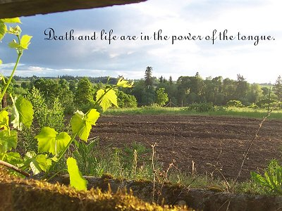 [Death and life are in the power of the tongue (Proverbs 18:21)]