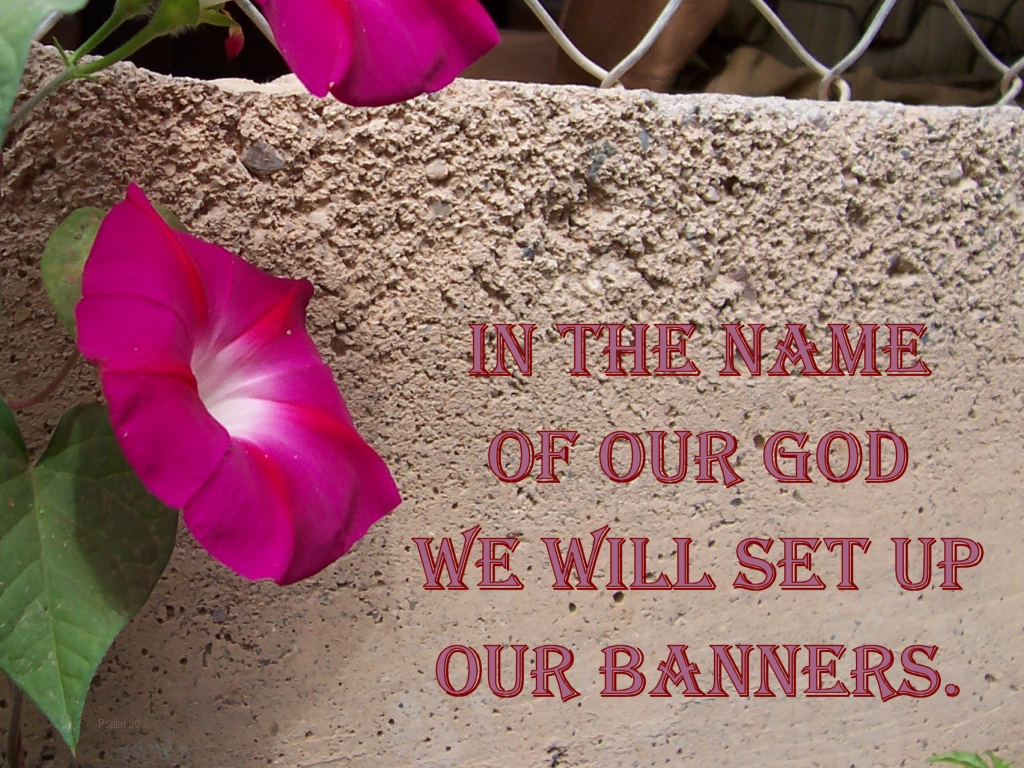 [The Scriptures say in Psalm 20:5 -- In the name of our God we will set up our banners]
