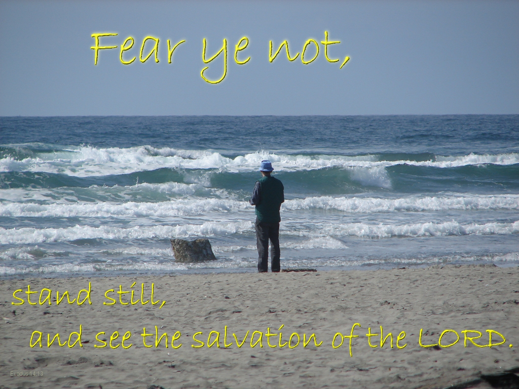 Mark Roth by the sea: Stand still and see the salvation of the LORD.