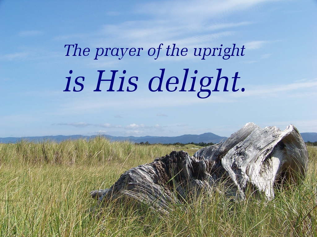 The prayer of the upright is his delight