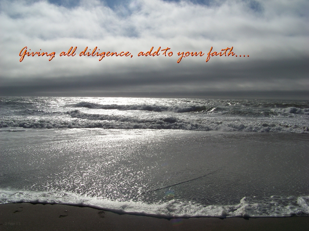 Giving all diligence, add to your faith (2 Peter 1:5)