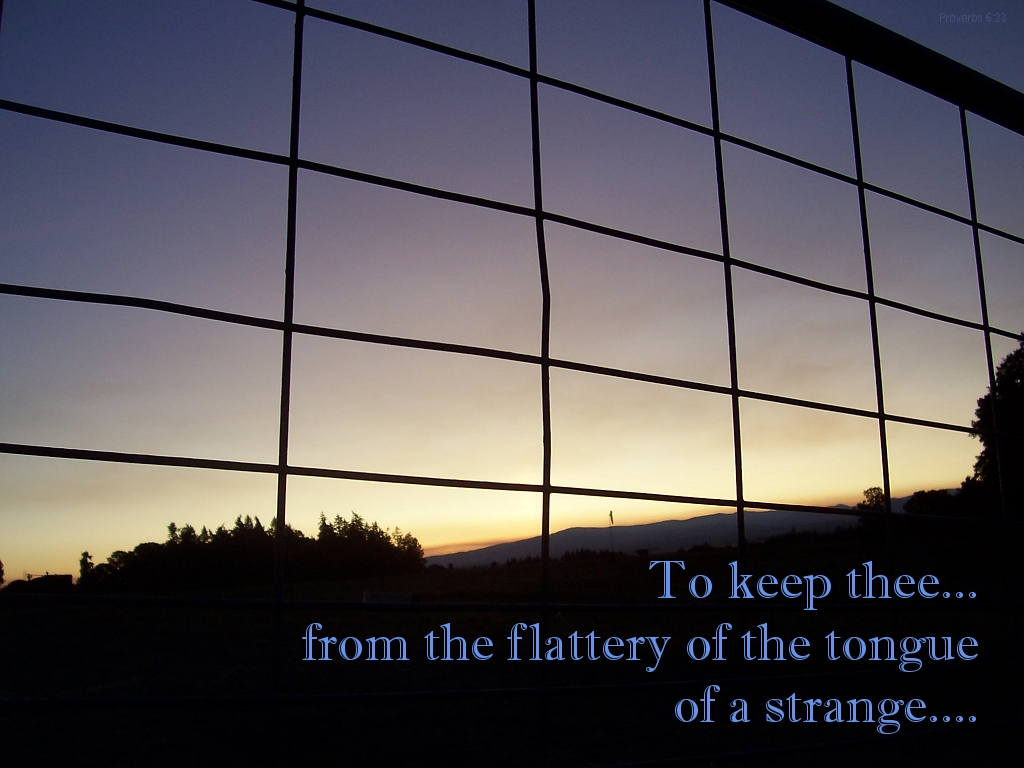 To keep thee from the flattery of the tongue of the strange... (Proverbs 6:24)