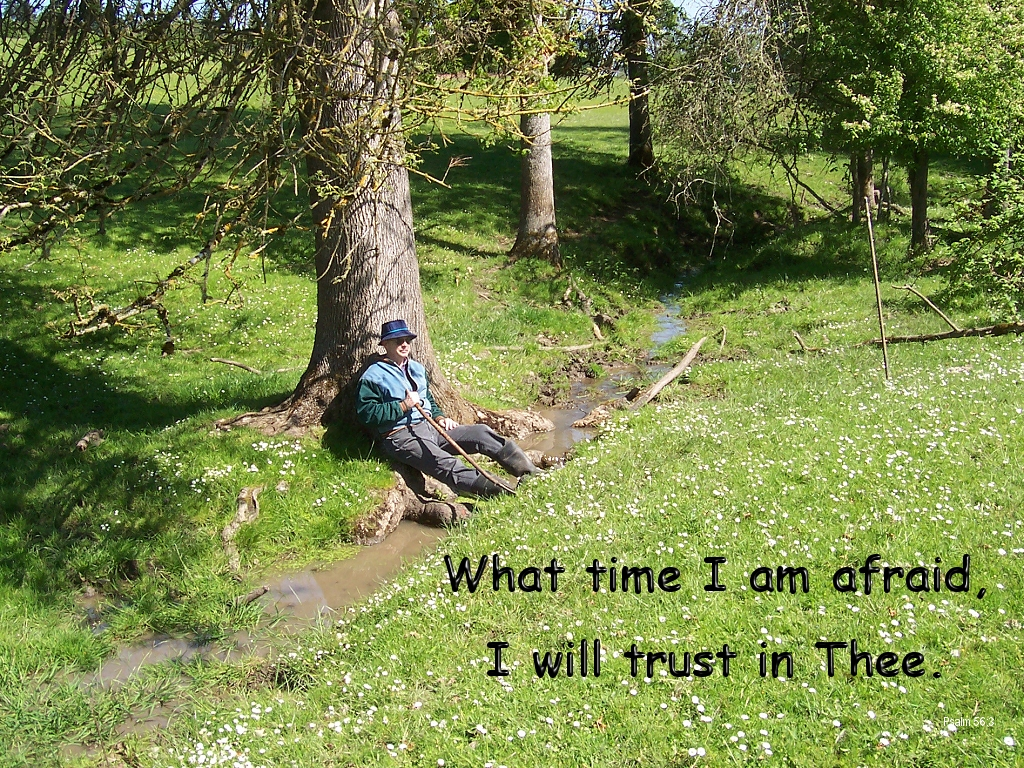 What time I am afraid, I will trust in thee (Psalm 56:3)